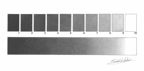GreyScale Value Chart