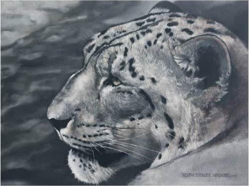 Edi Wadkins, Leopard, 2017, Oil